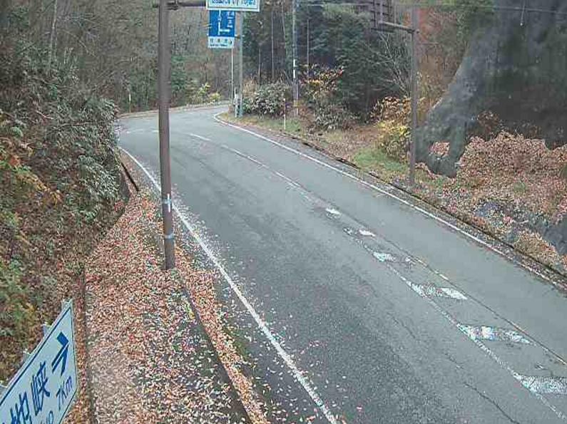 国道186号吉和国道434号分岐ライブカメラ
