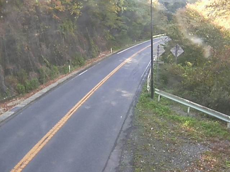 国道115号落合第2ライブカメラは、福島県相馬市山上の落合に設置された国道115号(中村街道)が見えるライブカメラです。