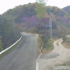 福島県道50号浪江三春線野川第1ライブカメラ(福島県葛尾村野川)