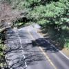 国道135号梅ノ木平ライブカメラ(静岡県伊東市富戸)