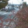 福島県道258号中ノ内小高線金房小学校ライブカメラ(福島県南相馬市小高区)