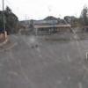 福島県道34号相馬浪江線金谷北釘野地内ライブカメラ(福島県南相馬市小高区)