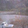 根尾川筋漁業協同組合ライブカメラ(岐阜県本巣市山口)