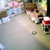わんわんコインランドリー柏店第2ライブカメラ(千葉県柏市塚崎)