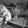 【期間限定】荘内神社境内ライブカメラ(山形県鶴岡市馬場町)