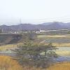 長良川鮎之瀬大橋ライブカメラ(岐阜県関市小瀬)