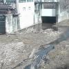 岩屋谷川瀬詰橋西側ライブカメラ(徳島県吉野川市山川町)