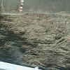 学島川学駅東側ライブカメラ(徳島県吉野川市川島町)