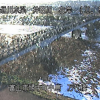 井田川万代橋ライブカメラ(富山県富山市婦中町)