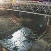 槇尾川川中橋ライブカメラ(大阪府和泉市三林町)