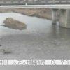 樫井川大正大橋ライブカメラ(大阪府泉佐野市南中樫井)
