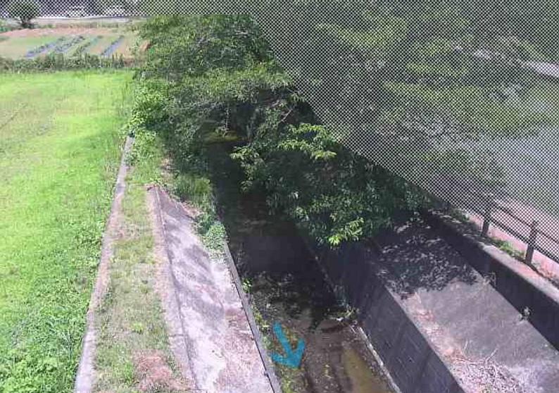 江間川とよ橋ライブカメラ(静岡県伊豆の国市北江間)