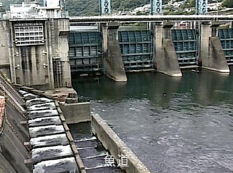 池田ダム魚道ライブカメラ(徳島県三好市池田町)