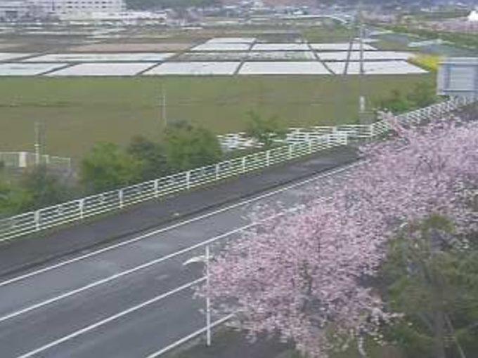 道の駅多古あじさい館ライブカメラ(千葉県多古町多古)