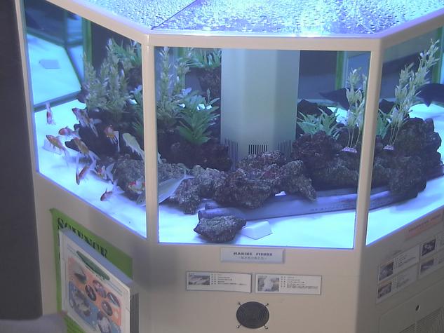 岡山理科大学から好適環境水水槽