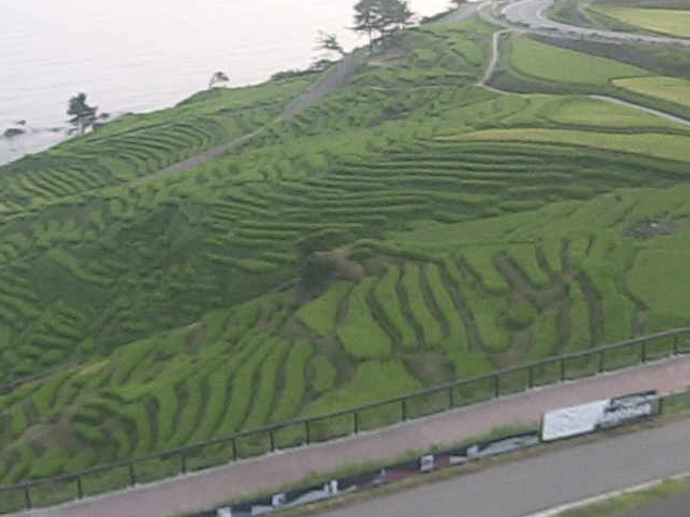 白米千枚田から千枚田・千枚田ポケットパークが見えるライブカメラ。