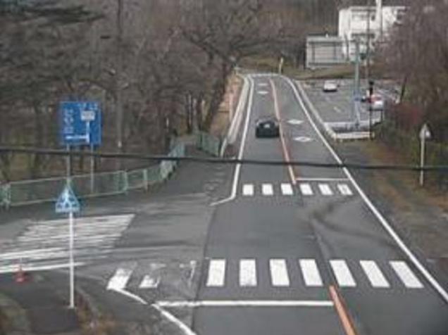 赤城大沼から前橋赤城線