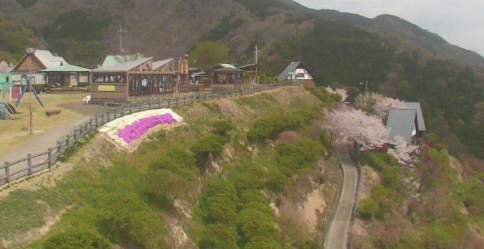 三好市健康とふれあいの森ライブカメラ(徳島県三好市三野町)