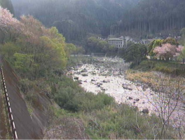 勝浦川沿いから月ケ谷温泉・桜