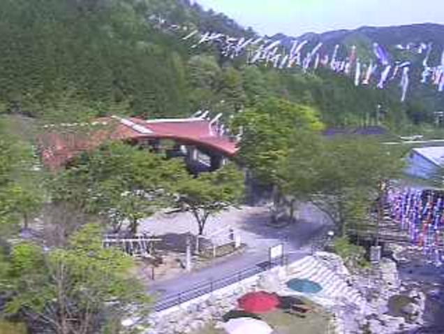 グリーンエコー笠形からグリーンドーム・キャンプ場内・桜・こいのぼり大空遊泳