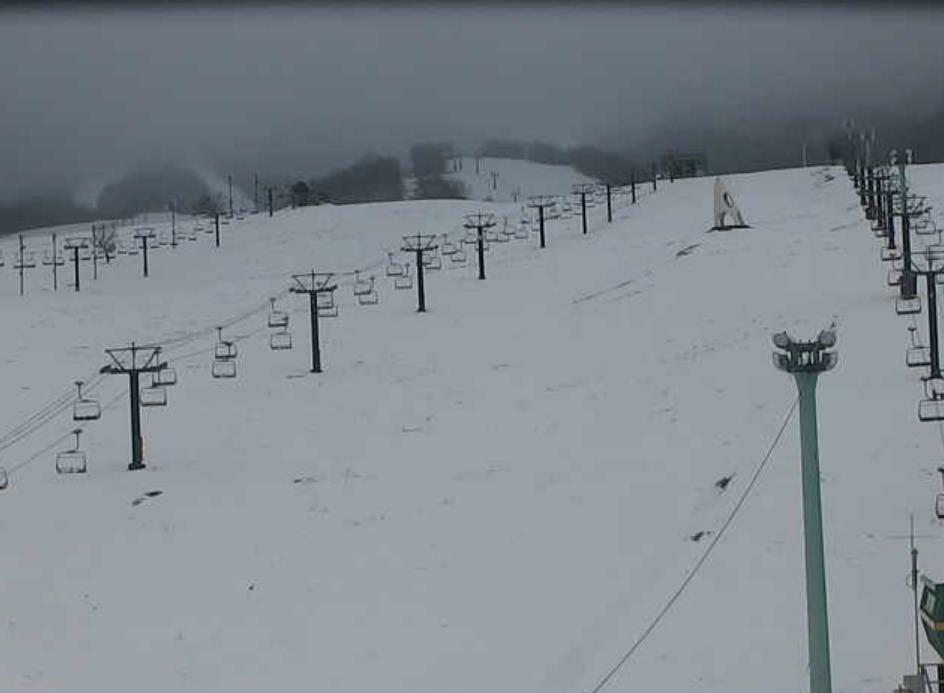高原 スキー いけ 場 つが 栂 池 高原