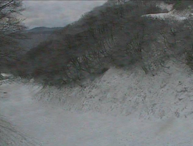 奥大山スキー場女良谷コース
