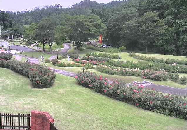 東沢バラ公園ライブカメラは、山形県村山市楯岡の東沢バラ公園に設置されたバラ園が見えるライブカメラです。