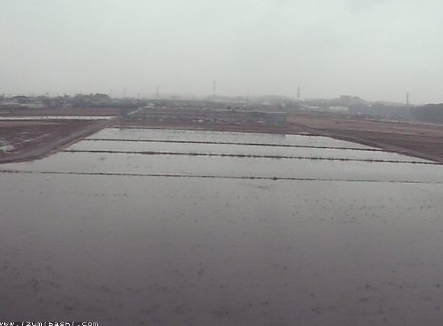 泉橋酒造から海老名耕地酒米栽培