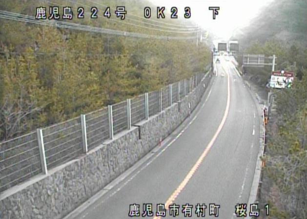 国道224号桜島