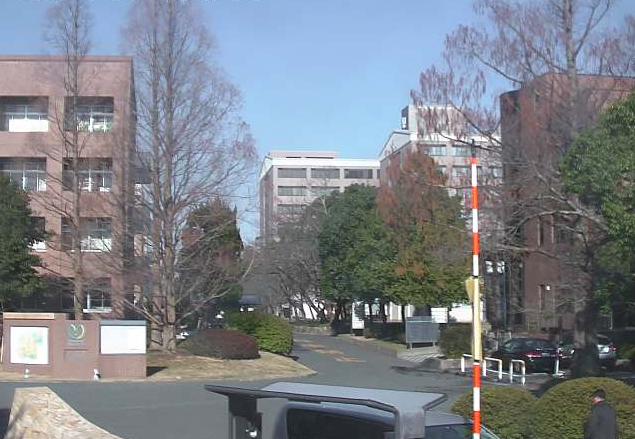 山口大学常盤キャンパス