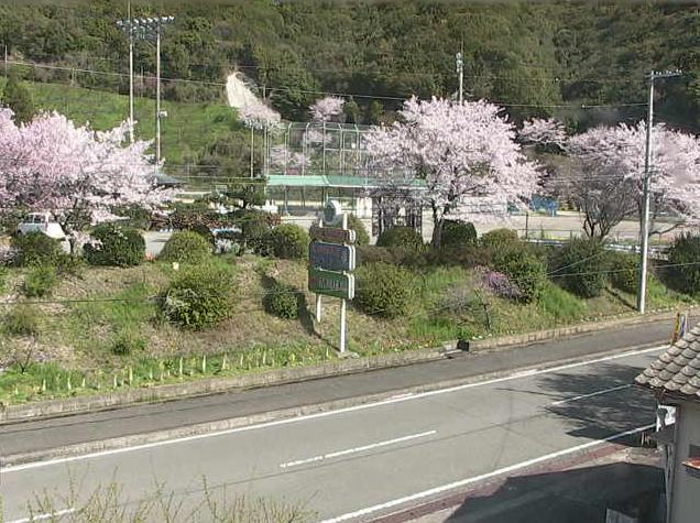 清川駐在所付近から国道424号・桜