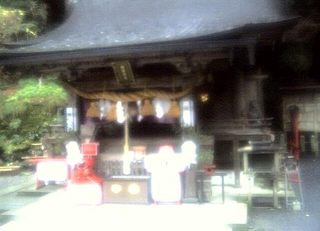 由岐神社本殿ライブカメラ(京都府京都市左京区)