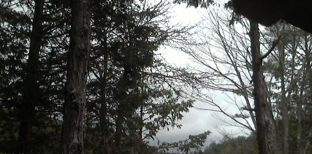去来荘から赤沢自然休養林・御嶽山