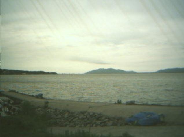 日本シジミ研究所から宍道湖