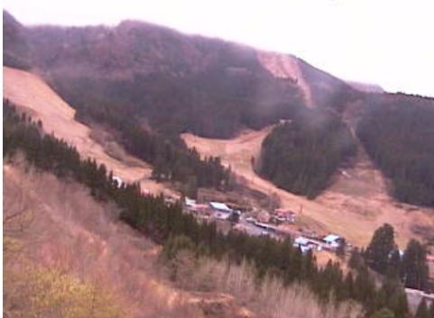 氷ノ山高原の宿氷太くんから氷ノ山