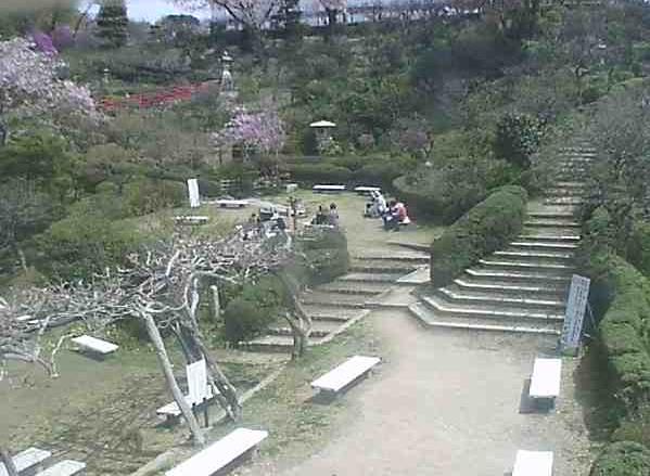 大本山中山寺梅林