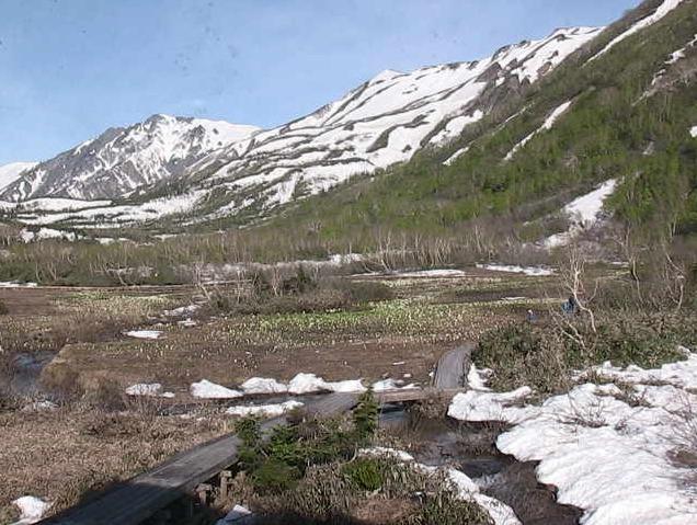 栂池自然園みずばしょう湿原ライブカメラ(長野県小谷村千国乙)