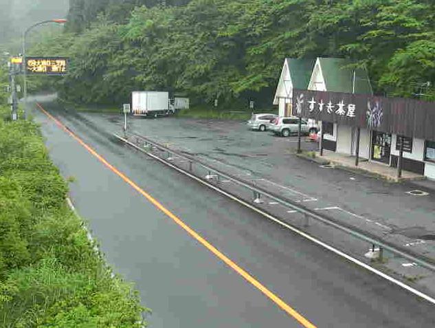 仙石原乙女峠から国道138号