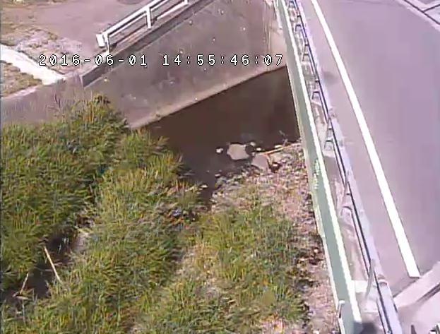 弾正橋付近から野上川・弾正橋・国道号461号が見えるライブカメラ。