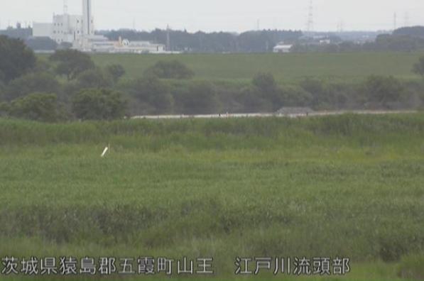 利根川江戸川流頭部ライブカメラは、茨城県五霞町山王の江戸川流頭部に設置された利根川が見えるライブカメラです。