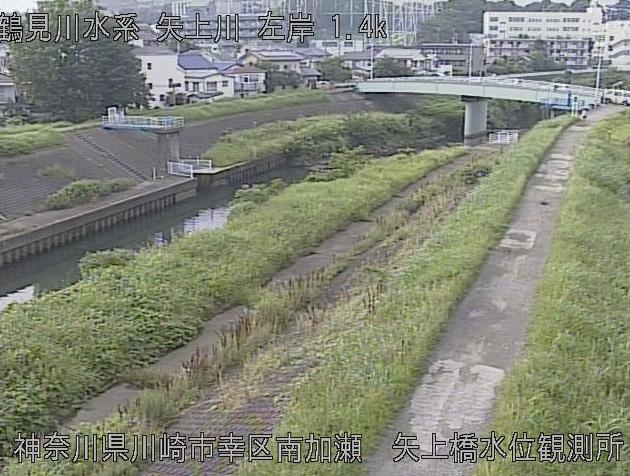 神奈川県川崎市幸区の矢上橋水位観測所に設置された矢上川が見えるライブカメラです。