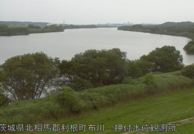 茨城県利根町布川の押付水位観測所に設置された利根川が見えるライブカメラです
