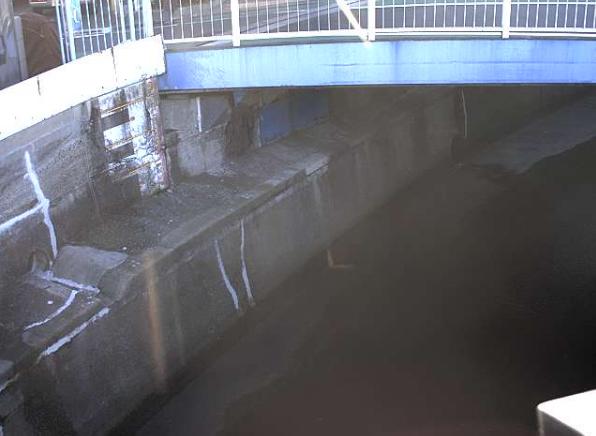 立会川桜橋ライブカメラは、東京都品川区東大井の桜橋に設置された立会川が見えるライブカメラです。