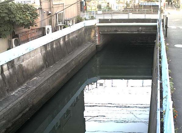 立会川立会川橋ライブカメラは、東京都品川区東大井の立会川橋に設置された立会川が見えるライブカメラです。