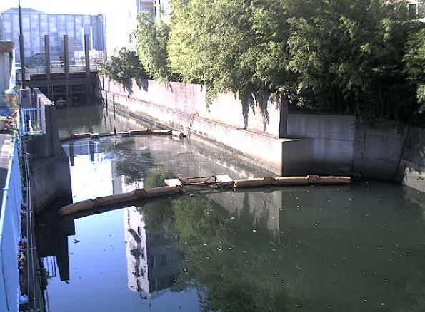 立会川河口部下流側ライブカメラは、東京都品川区東大井の河口部下流側に設置された立会川が見えるライブカメラです。