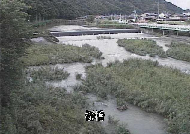紫川桜橋上流ライブカメラは、福岡県北九州市小倉南区の桜橋上流に設置された紫川が見えるライブカメラです。