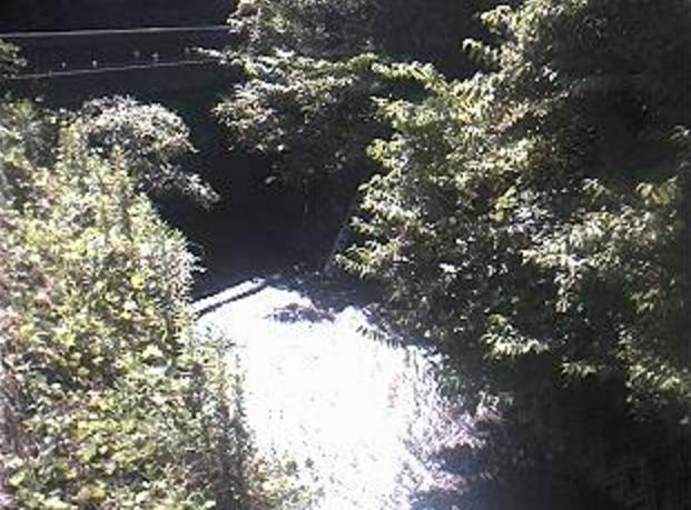 宇美川船石橋ライブカメラは、福岡県宇美町炭焼の船石橋に設置された宇美川が見えるライブカメラです。