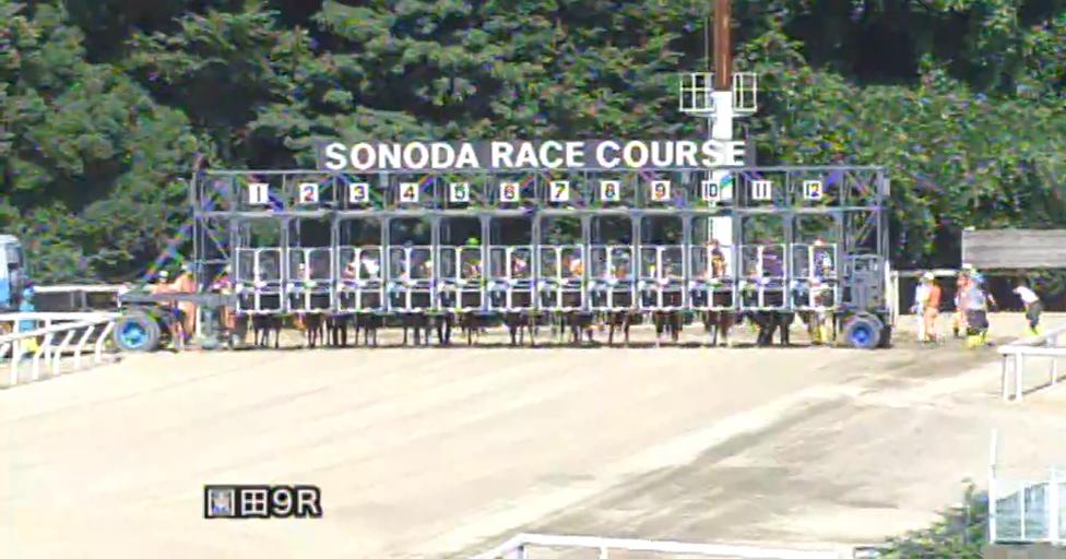 園田競馬ライブカメラは、兵庫県尼崎市田能の園田競馬場に設置された競馬実況中継・レース映像が見えるライブカメラです。