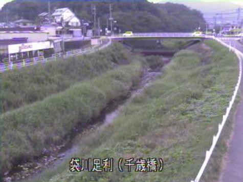 栃木県足利市末広町の千歳橋に設置された袋川が見えるライブカメラです。