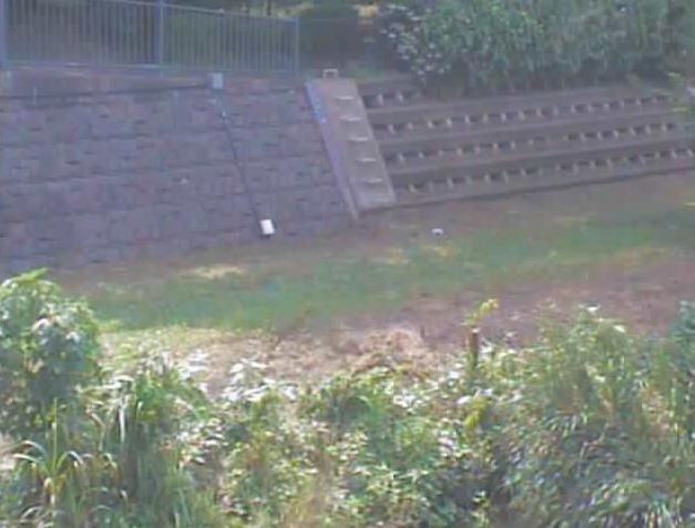 野川大沢池上ライブカメラは、東京都三鷹市大沢の大沢池上に設置された野川が見えるライブカメラです。